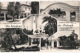 Un Bonjour Du Telagh Ecole Des Filles Eglise Entrée Du Jardin Public Maison .... Neuve Excellent état - Algérie