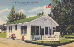 Post Office Rattlesnake Florida Curteich