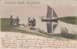 Fischer In Ihrem Beruf 1902 - Pesca