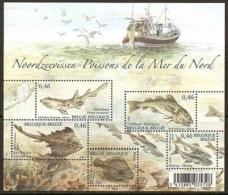 Belgien**Nordsee FISCHE-BLOCK-2006-5Marken-Kabeljau-Scholle-Hering-Hai-FISHES - Unclassified