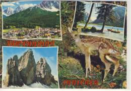 SAN CANDIDO - INNICHEN:  Panorama, Lago Di Dobbiaco, Toblachersee,  ... - Italia