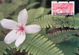 TAIWAN (2009) - Carte Maximum Card - ATM - Tung Blossoms / Flower - 92
