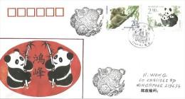 Le Panda Et Le Koala. Emission Commune AUSTRALIE-CHINE, Belle Lettre Adressées Au Territoire Du Nord (Australie) - Bears
