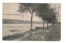 GENVAL: PARC DE GENVAL : UNE AVENUE   (20 Sept 1910) - Belgique