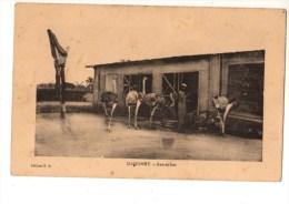C P A--AFRIQUE   DAHOMEY--autruches--voir 2 Scans - Dahomey