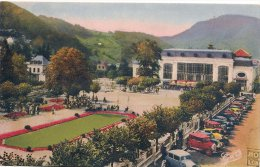 L52_245 - Le Mont Dore - G. D'O 1528 - Parc Du Casino - Le Mont Dore