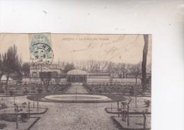 452  AMIENS    LE  JARDIN  DES PLANTES      1906 - Amiens