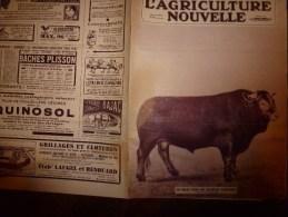 1932  L´AGRICULTURE NOUVELLE : Fleurs à HILLEGOM (Hollande); Doryphore; Vinificaion Individuelle; Les Poules Chinoises - Livres, BD, Revues
