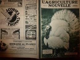 1932 L´AGRICULTURE NOUVELLE : Moteurs Semi-Diesel,Diesel Et Super-Diesel ;En NORVEGE;Faire Des Belles Endives; RECETTES - Livres, BD, Revues