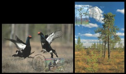 Maxicard Belarus 2014 Mih. 1017/18 Flora And Fauna. Biotopes Of Belarus. Bogs (2 Maxicards) - Bielorussia