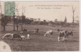 Fontaines-Saint-Martin -  Pré Des Guettes - Le David - Otros Municipios
