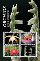 Canouan Grenadines Of St. Vincent-2014-Flower-Flora -Orchids - St.Vincent E Grenadine