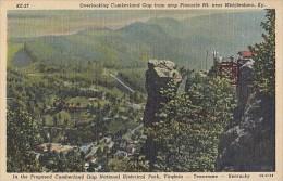 6381- POSTCARD, PANORAMA OF CUMBERLAND GAP FROM THE PINNACLE MOUNT - Etats-Unis