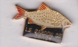 Poisson Péche , Le Gardon De Cergy , Pontoise , Val D'Oise - Animaux