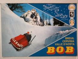 Cartolina  -  Breuil - Cervinia - Valle D' Aosta  - Pista Del Bob. - Italia