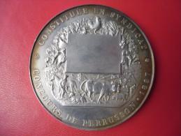 MEDAILLE ARGENT 121 Grammes 69 Mm De 1897 Société D'Agriculture, De Viticulture Et D' Horticulture De PERRUSSON (dpt 37) - Professionali / Di Società