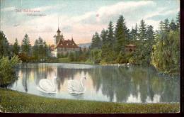 Schlesien, BAD SALZBRUNN, Schwedenteich, Gel.1910 - Schlesien