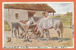 SANG186,Basse-cour,cheval ,poulain,poule,coq,pigeon ,H. G. Wildg,fantaisie,précurse Ur,circulée 1904 Cachet Champ Du Mou - Autres