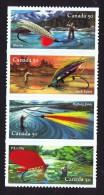 2005  Fishing Flies  Sc 2088  -  BK 306 - Full Panes