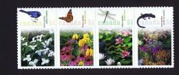2006  Gardens  Sc 2145  -  BK 322 - Full Panes