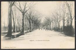 Cpa 44_ST NICOLAS DE REDON - REDON - La Chaussée St Nicolas, Animation Et Attelage éloignés - Redon