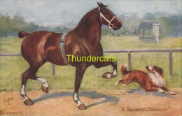 CPA ILLUSTRATEUR DRUMMOND ** ARTIST SIGNED RAPHAEL TUCK ** CHEVAL HORSE - Tuck, Raphael