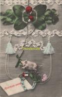 CPA HEUREUSE ANNEE COCHON ** NEW YEAR PIG GOOD LUCK ** VARKEN - Cochons