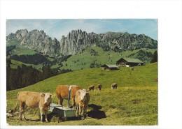 LVA1804 - Jaunpass Vaches (Format 10 X 15) - FR Fribourg