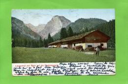 LANGENTHAL Mit Blick Auf Die Probstenwand - Bad Toelz