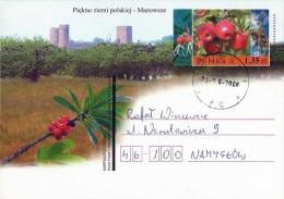 Poland Pologne, Mazovia Tourism: Malus, Apples, Pommier, Castle, 2008. - Obst & Früchte