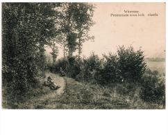 Winenne  Promenade Sous Bois - Beauraing