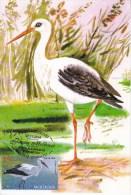 Moldova ,  Moldavie  , Moldau ; 2014 ;  Fauna Moldova ;  Birds ; White Stork ; Maxicard ; First Day - Moldawien (Moldau)