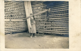 Travail Du Bois -Scierie -Stockage De Planches - Ouvrier ( Non Située ) - Artisanat