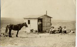 Cabane Cheval Writing On Back Uncle Jim Cabin In Wyoming Horse Dog - Etats-Unis