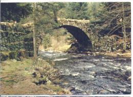 88 GERARDMER Et Son Lac - Le Pont Des Fées - Circulée 1985 - Gerardmer