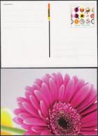 Pluskarte Ganzsache Werbepostkarte Deutsche Post MiNr. WP 3 Blume Europa Ungelaufen - Postales Privados - Nuevos