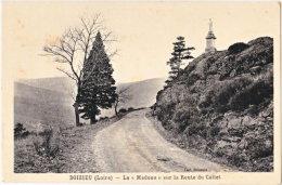 42. DOIZIEU. La Madone Sur La Route Du Collet - Andere Gemeenten
