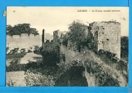 CP, 37, LOCHES, Le Donjon Enceinte Intérieure, Vierge, TRES RARE - Loches