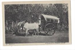 LVA1823 -  Dhamani Mahadeo Belgaum Attelage - Inde