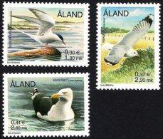 Aland 2000 (02) - Birds - Arctic Tern, Mew Gull, Great Black-backed Gull - Aland
