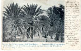 NAMIBIE - Garten Der Schutztruppe In OTJIMBINGWE - Namibie