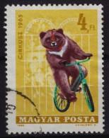 BEAR / Bike Bicycle - Hungary 1965 / Used - Beren