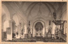 BELGIQUE - FLANDRE ORIENTALE - GERAARDSBERGEN - GRAMMONT - VIANE-MOERBEKE - Binnenzicht Kerk. - Geraardsbergen