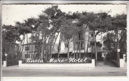 ITALIE Italia ( Toscana ) LIDO DI CAMAIORE : Pineta Mare Hotel - Jolie CPSM Photo Dentelée Noir Et Blanc PF - - Altre Città
