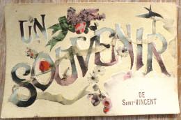 Photo  Litho COLLAS & Cie Serie Ideale 136 Souvenir De Saint St Vincent Paillettes 1917 Timbre Cachet Redon - Gruss Aus.../ Grüsse Aus...