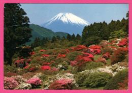 Mt Fuji In Early Spring - PUB BY NBC - 1971 - Japan