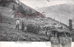 (25) - Aux Champs, à Médière - Paysans, Agriculteur, Moisson, Agriculture, Cheval De Trait,travaux Des Champs - 2 SCANS - France