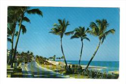 Etats Unis: View Of Beach As Seen From Ocean BLVD. In Palm Beach, Florida, Air Mail, Timbre (14-3542) - Palm Beach