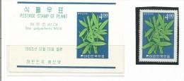 FRFI060 - COREA - FIORI - - Vegetazione