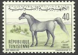 TUNISIA - 1968 Arab Horse 40m MLH *   Sc 520 - Tunisie (1956-...)